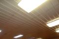 Ještě-smíšená světla